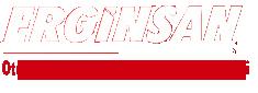 Erginsan Otomotiv Hırdavat Sanayi ve Ticaret Limited Şirketi